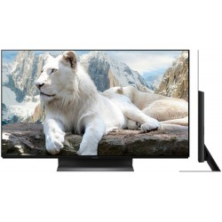 Телевизор PANASONIC TX-65GZR1000